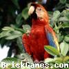 Bird Jigsaw Icon
