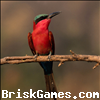 Birds Sliding Puzzle Icon