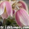 Flower Jigsaw Icon