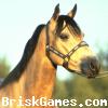 Horse Jigsaw Icon