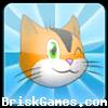 Kitten Adven. Icon