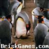 Penguin Jigsaw Icon