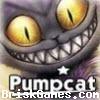 PumpCat Icon