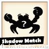 Shadow Match Icon