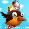 Smart Birds Icon