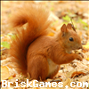 Squirrel Jigsaw Icon