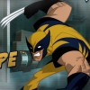 Xmen Wolveri. Icon